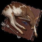 Deer Pelt - Piebald