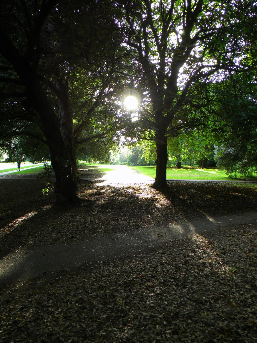 Light Walkway. by FlashOfGrey