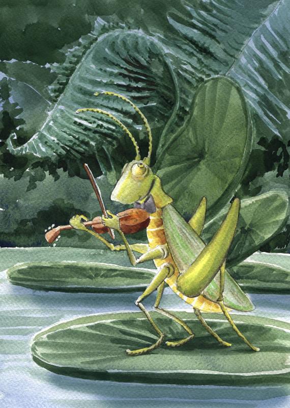 The Cricket by asiapasek