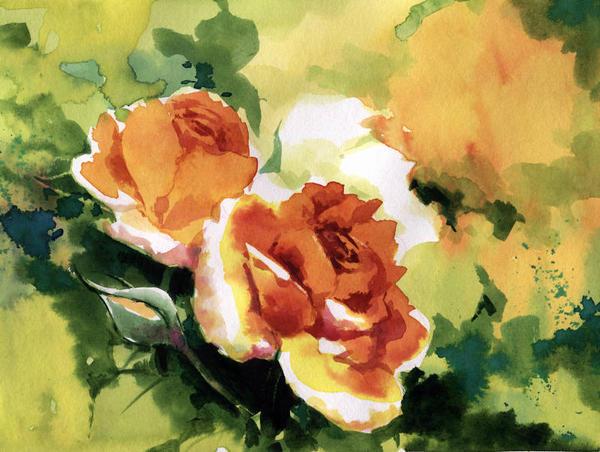 Summer Roses in November by asiapasek