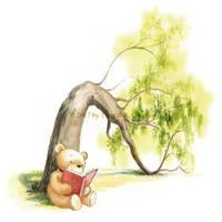 Teddy Bear Reading by asiapasek