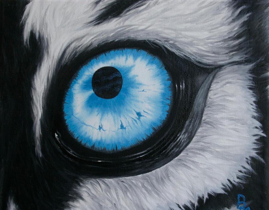 Blue Tiger Eye (remake) by brenkat on DeviantArt