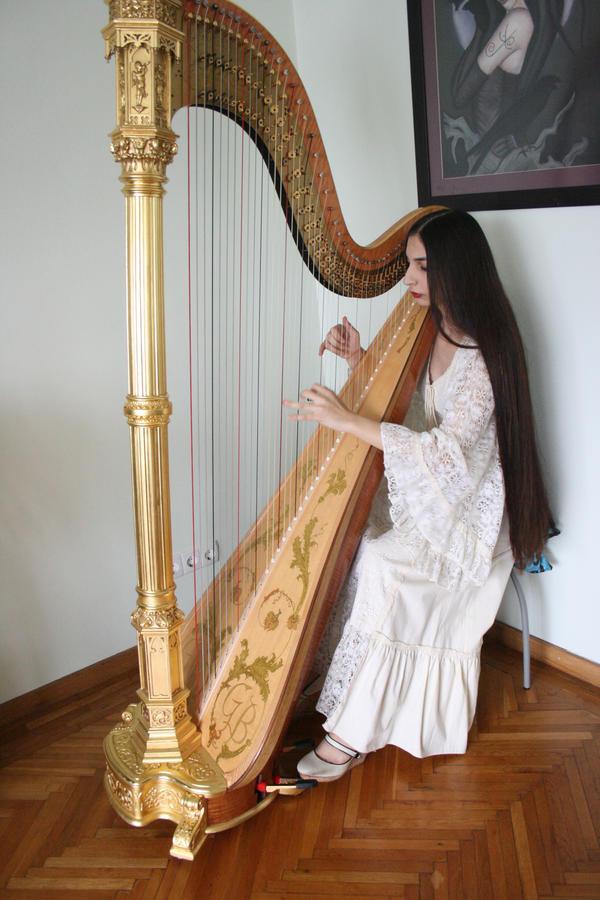 aoyama harfe preisliste