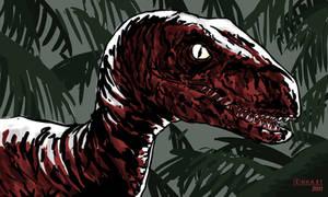 Raptor by kevinenhart