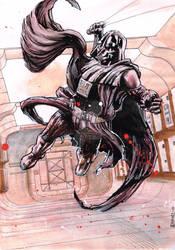 Darth Vader Commission LFCC