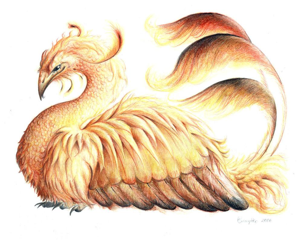 Phoenix by Raironu