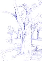Random-trees-in-the-park