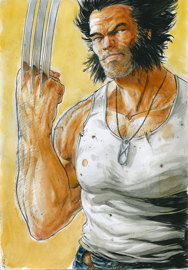 Wolverine by NDemare