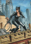 Catwoman On A Roof