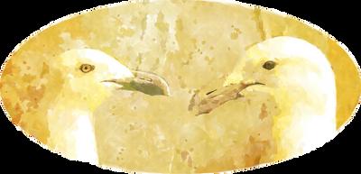 Gullies by malkavian30504