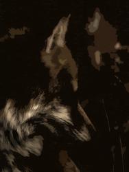 Foxy by malkavian30504