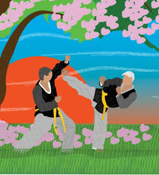 Tae kwon do by Lurcanio