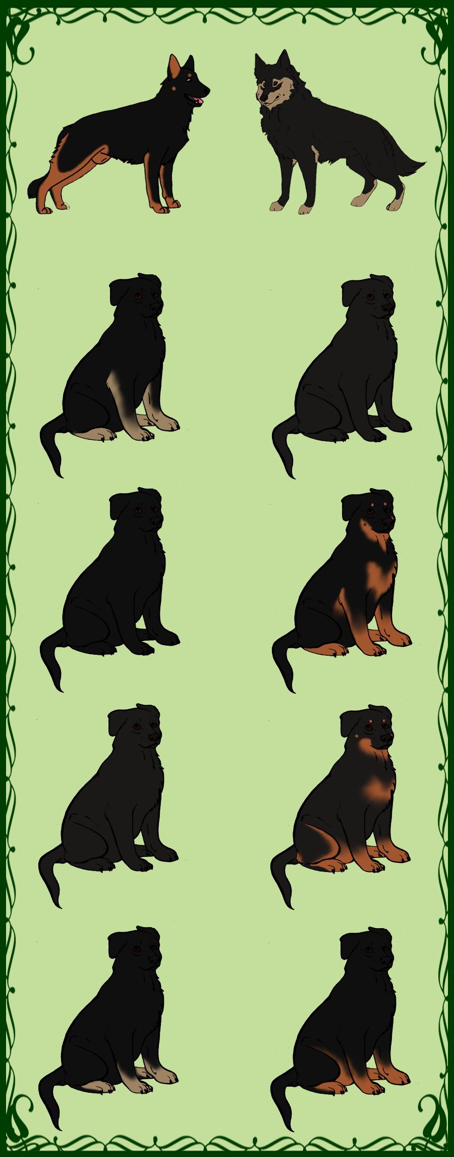 Siff x Riki - GSD pups - CLOSED by TyrannosaurusRexKenn