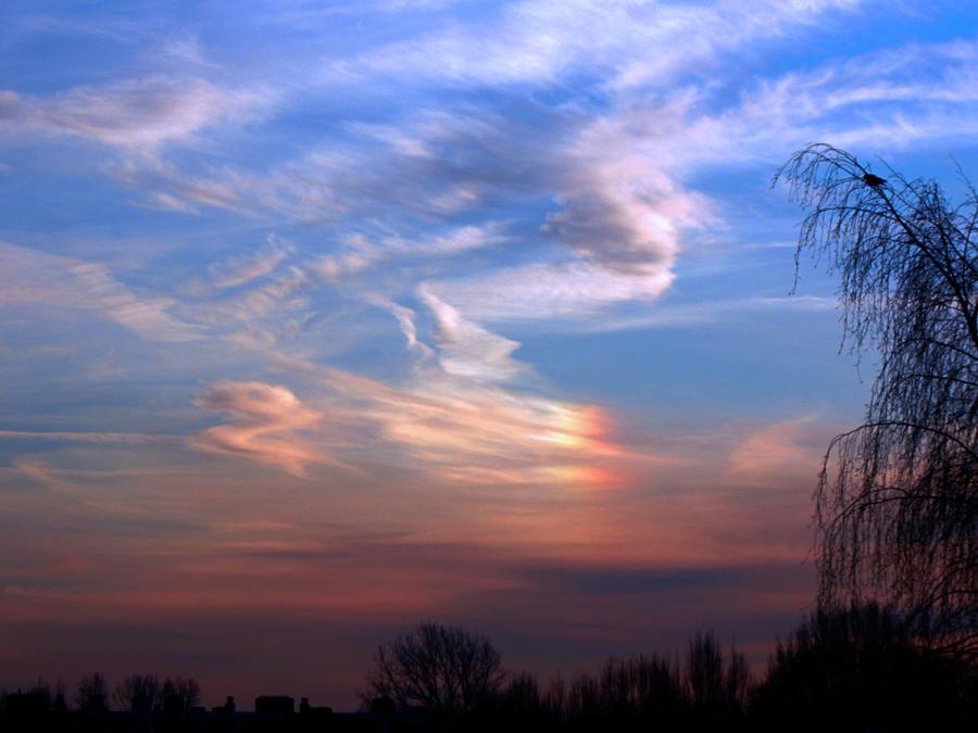 Sky 17th Jan - Sundog by Xaeyu