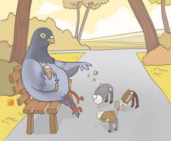 Pigeon feeding by Sheharzad-Arshad