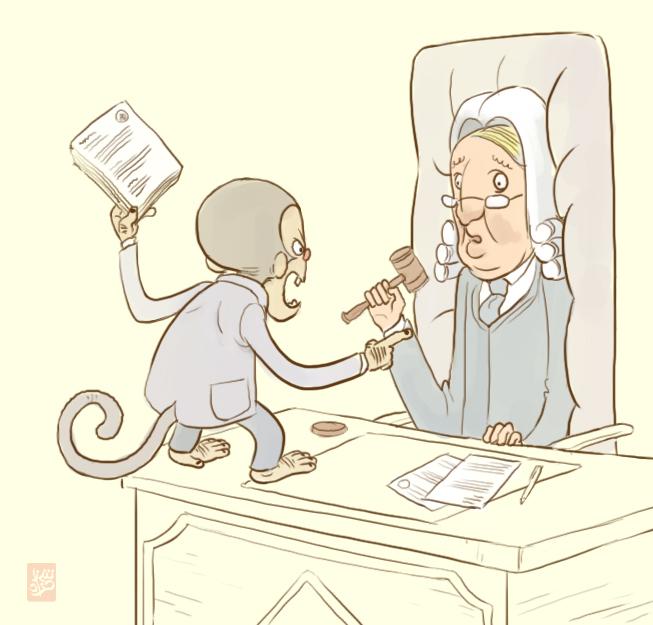 Monkey Lawyer sketch by Sheharzad-Arshad