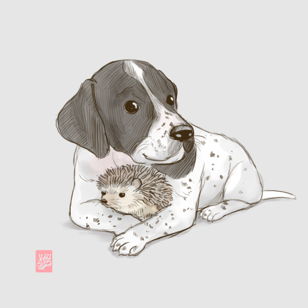 Dog and hedgehog rough sketch by Sheharzad-Arshad