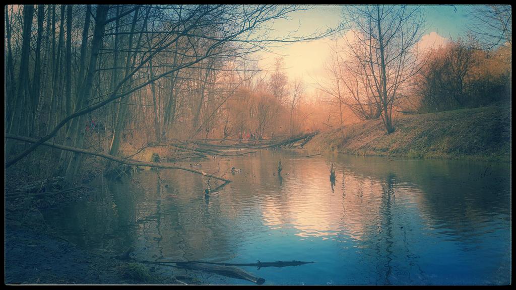 Fotografija dana Silence_by_mikhasus-d85he8g