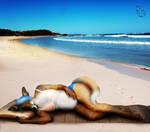 Sunbathing Woxie