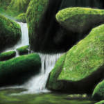 Rapid - Mosses by ZeniXue