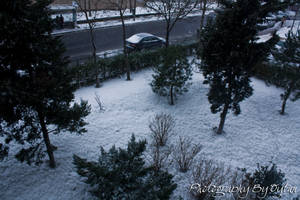 Snow in the Istanbul by crazytux