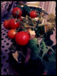 Tomato by crazytux
