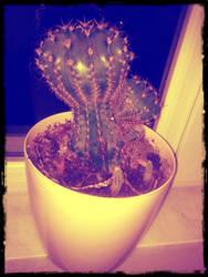 Big Cactus by crazytux
