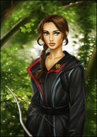 Hunger Games: Katniss by daekazu