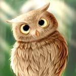 #owwlll by pshabelka