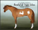 VA's Armful of Tiger Lilies