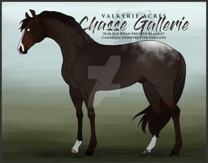 VA's Chasse Gallerie