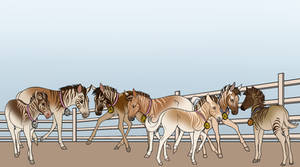 Quagga Influx CLOSED by TheWolvenEstates