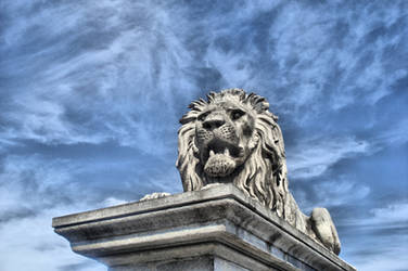 Lion statue by MacRoth