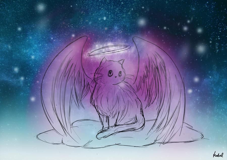 Cat S Galaxy By Unicornchick On Deviantart