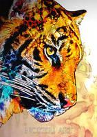 Tiger - portrait. by Noxeri