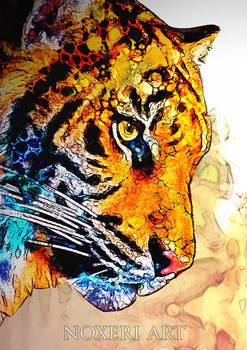 Tiger - portrait.