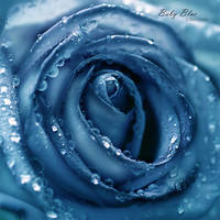 baby Blue by ninazdesign