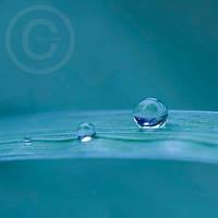 rain drops by ninazdesign