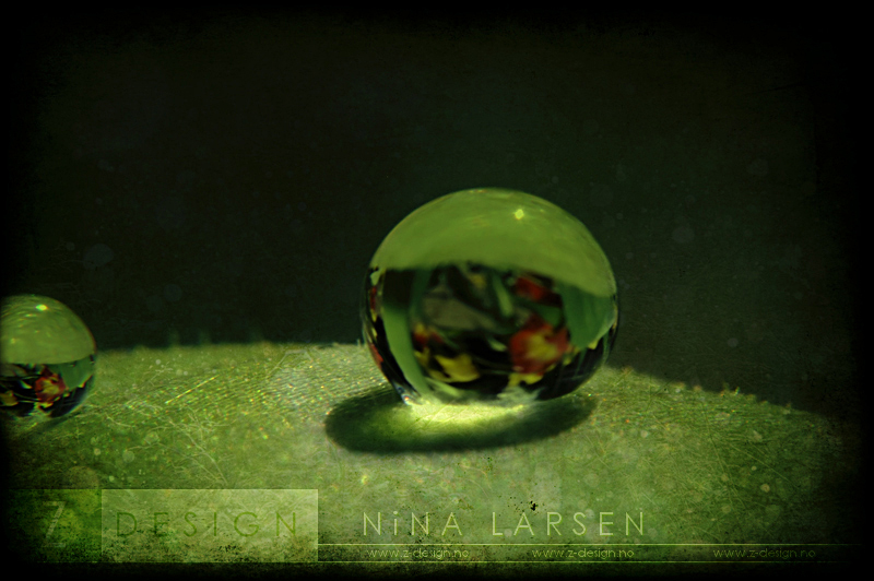 Small world by ninazdesign