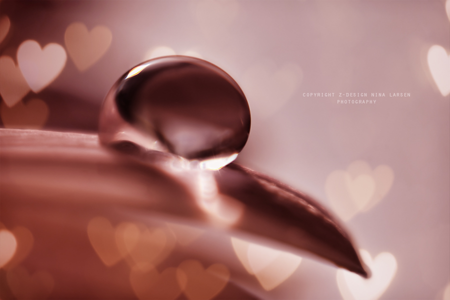.:in my heart:. by ninazdesign