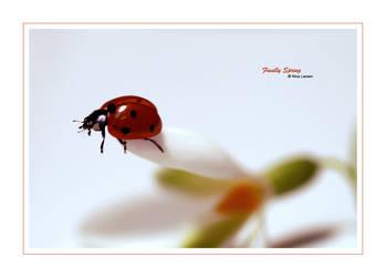 Finally Spring by ninazdesign