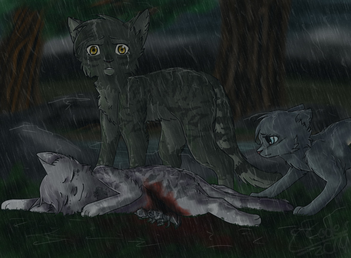 Warrior Cats Rain