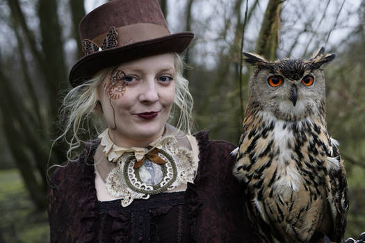 Steampunk owl stock
