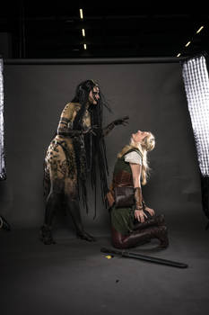 Enchantress vs. Elve Stock
