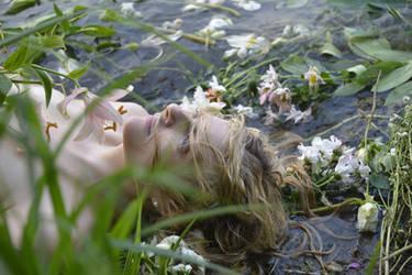 Ophelias Dreams - Stock