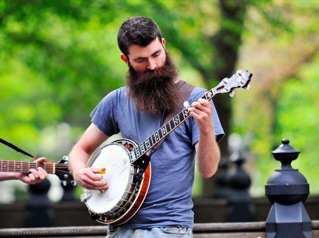Image result for Banjo Player