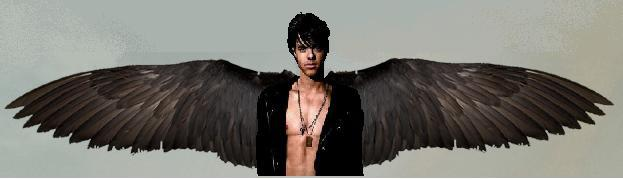 patch cipriano 2 by - photo #4