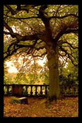 The tree by thomas-darktrack