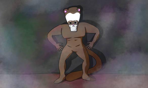 silly ferret