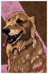 Pup Portrait by DrewLyons